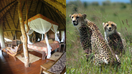Elsa's Kopje ,Safari Camp, Meru National Park, Kenia